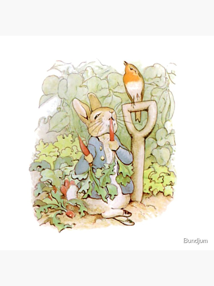 Peter Rabbit Steals Carrots by Bundjum