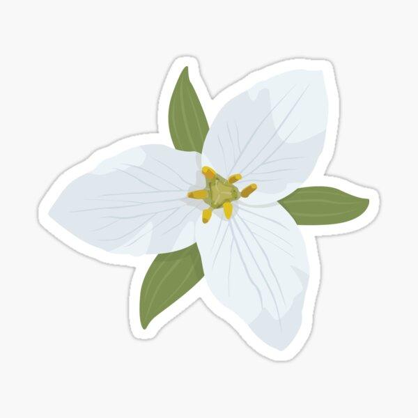 White Trillium Flower Sticker