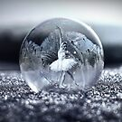 Ballet in a bubble by © Kira Bodensted