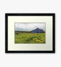 Indian Root Pills Barn Framed Print