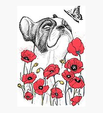 Pug in flowers Photographic Print