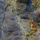 Rocks on Bournda Head by Alison Howson