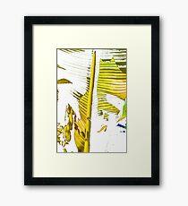 Palm Yellow Framed Print