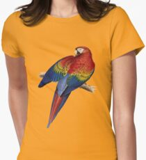 Illustration of A Scarlet Macaw Vector Womens Fitted T-Shirt