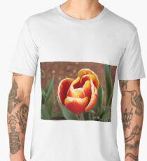 Red and yellow tulip Men's Premium T-Shirt