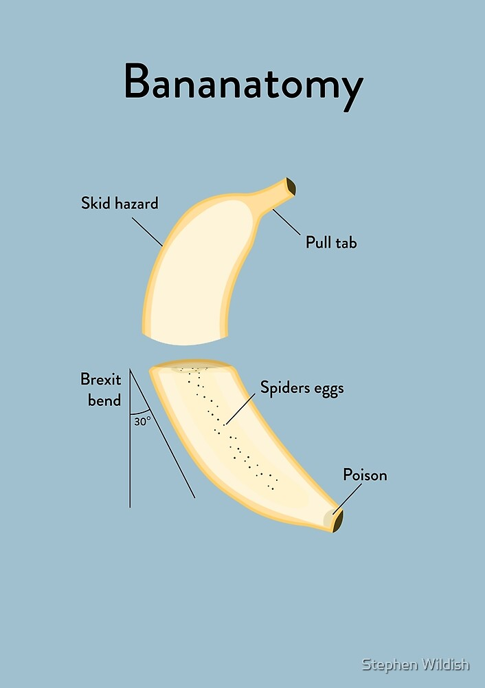 Banana Anatomy by Stephen Wildish