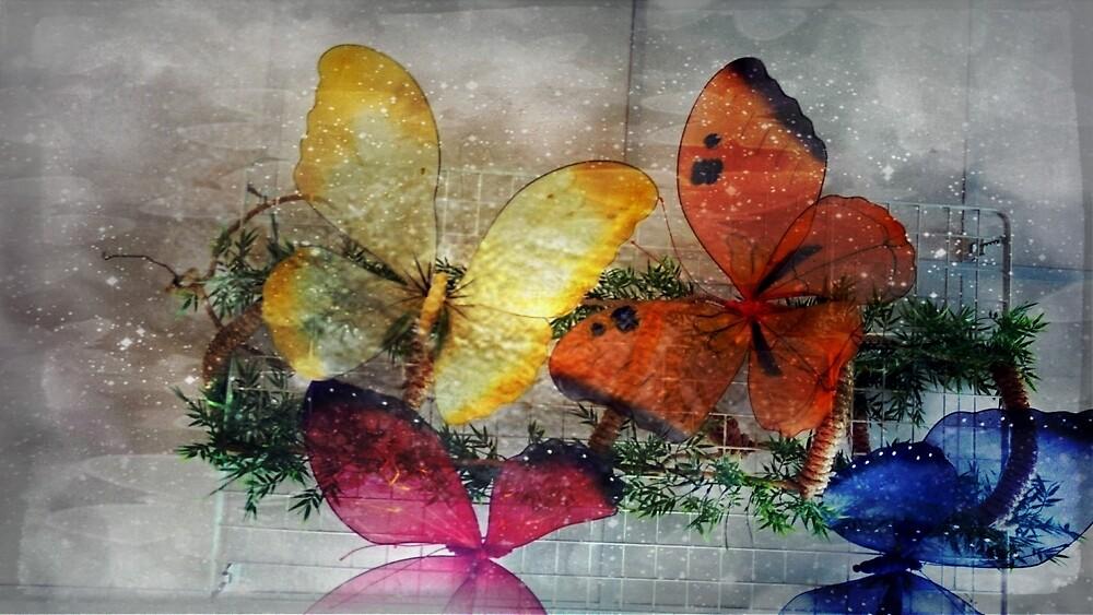 Sparkling Butterflies by Linda Ursin
