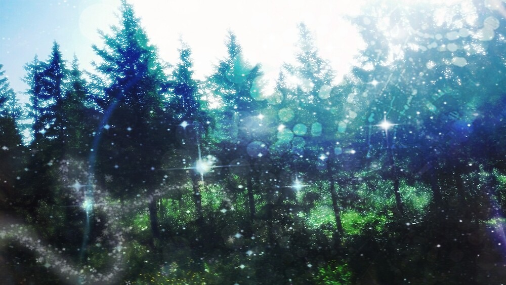 Magic Forest by Linda Ursin