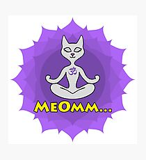 Meditating Cat, mandala and Meomm Sign for yoga Photographic Print