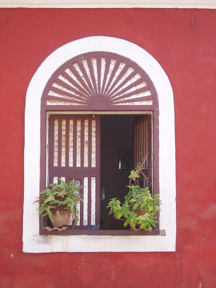 Window into Goan Life by JetRobins