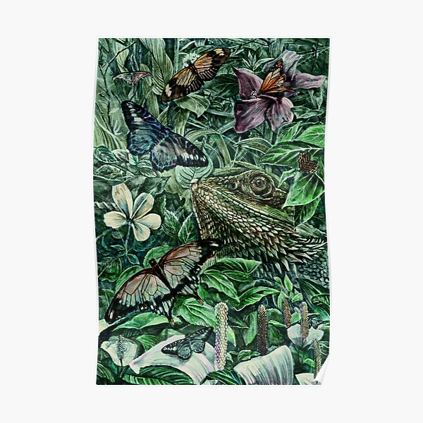 Bearded Dragon and Butterflies - Colour Poster