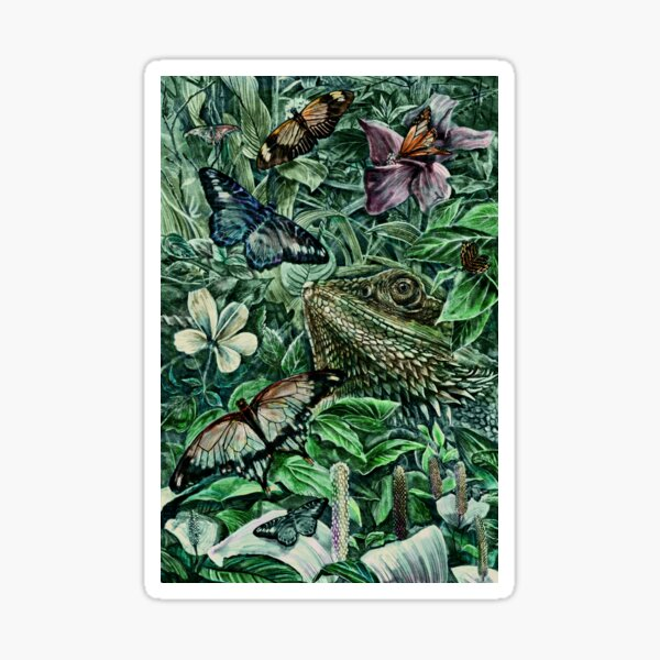 Bearded Dragon and Butterflies - Colour Sticker