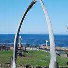 Whitby Whalebone arch by dougie1