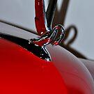 Packard Swan by Jennifer Vickers