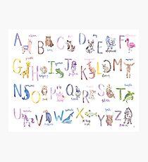 Alphabet Animals in Watercolor Photographic Print