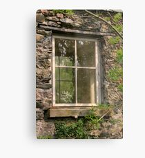 Looking Through The Window... Metal Print