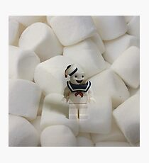 Brickography Pictures - Stay Puft Photographic Print