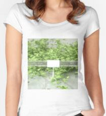 Ivy 2 Women's Fitted Scoop T-Shirt