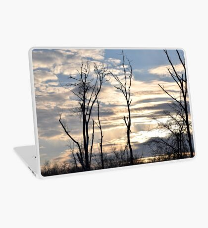 Cloudy Day  Laptop Skin