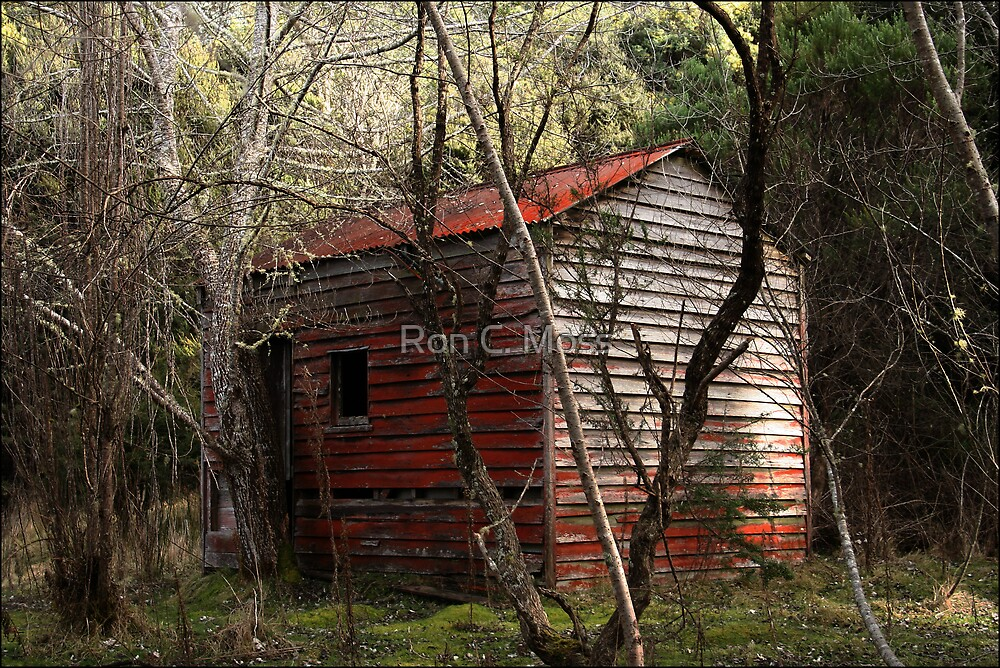 Hidden Hut by Ron C. Moss