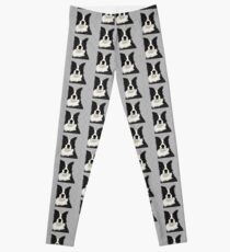 Beautiful Border Collie Leggings