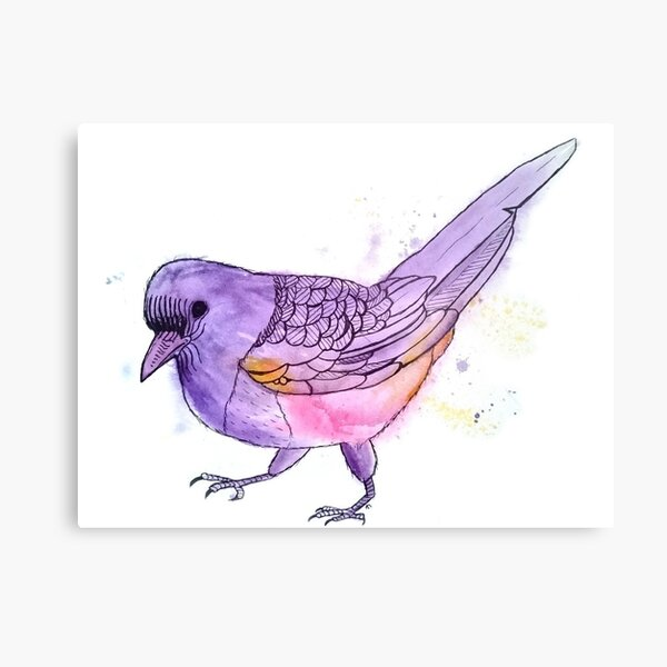Young Magpie in Purple Metal Print