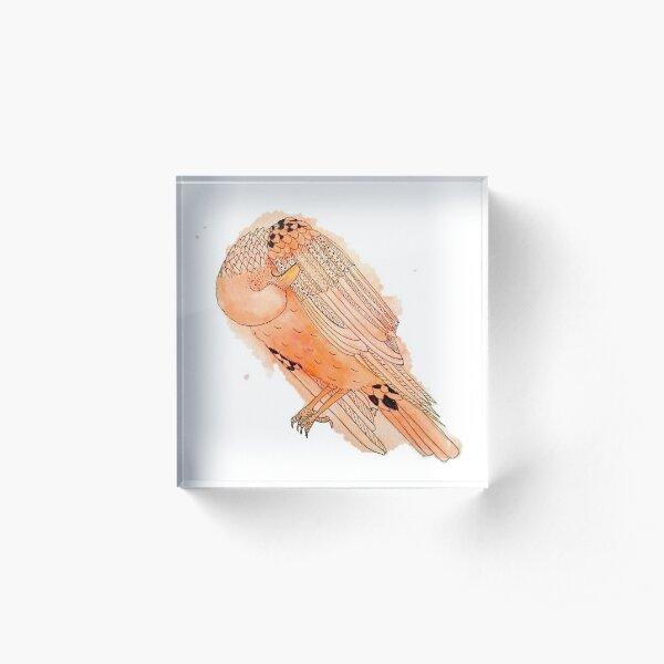 Vain Raven in Orange Acrylic Block
