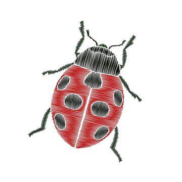 Cute and friendly ladybug by palomita222