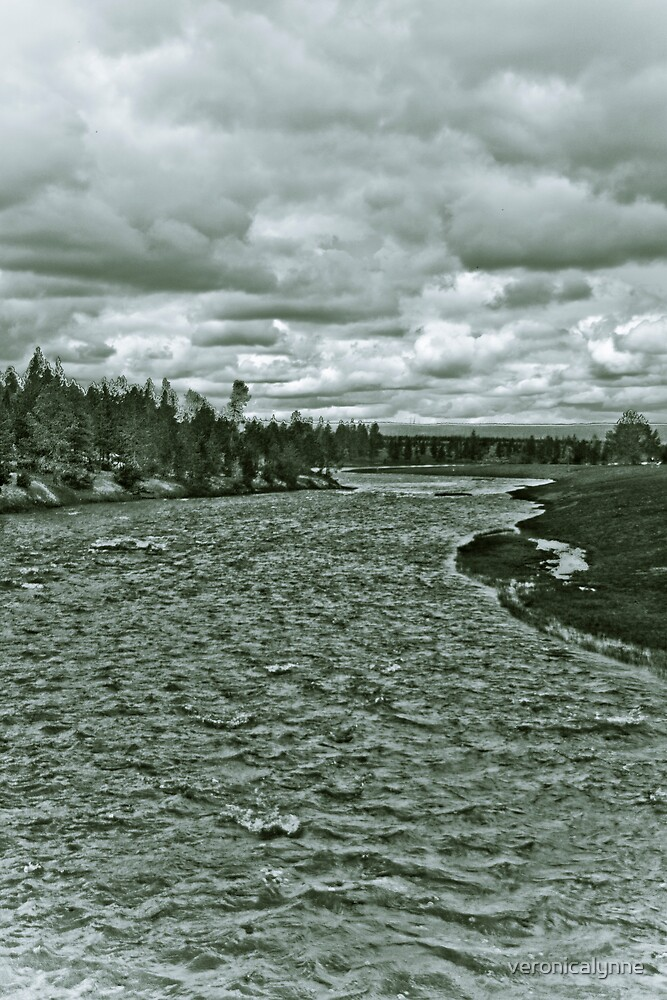 Yellowstone in Black and White #4 by veronicalynne