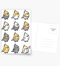 Chubby Cockatiels Postcards
