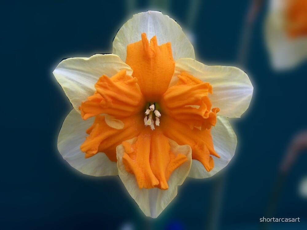 Narciso by shortarcasart