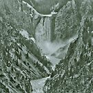 Yellowstone in Black and White #13 by veronicalynne