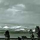 Yellowstone in Black and White #15 by veronicalynne