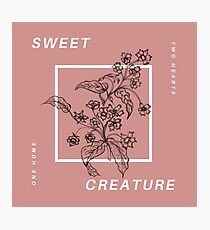 sweet creature Photographic Print