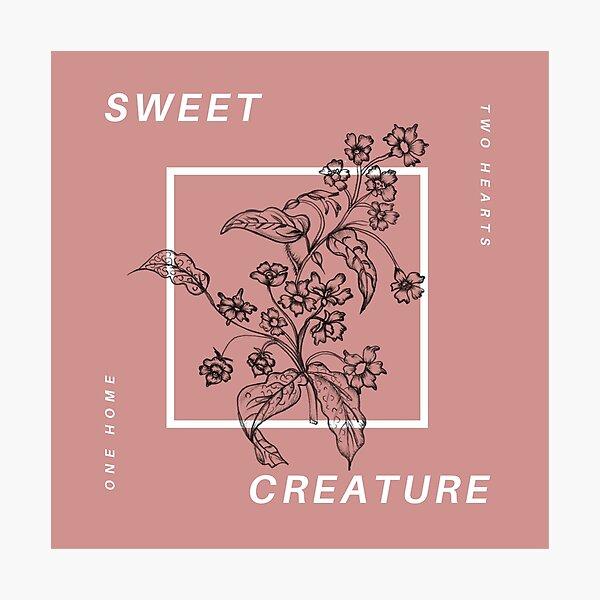 sweet creature Photographic Print