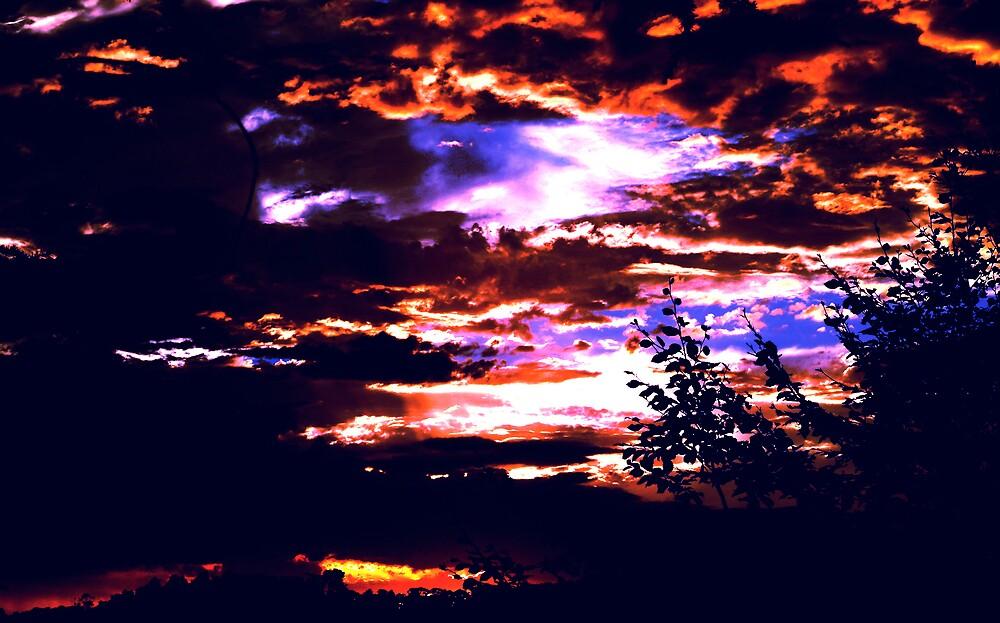another dusk .. by alfarman