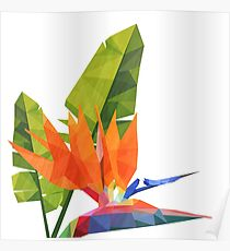 Geometric bird of paradise Poster