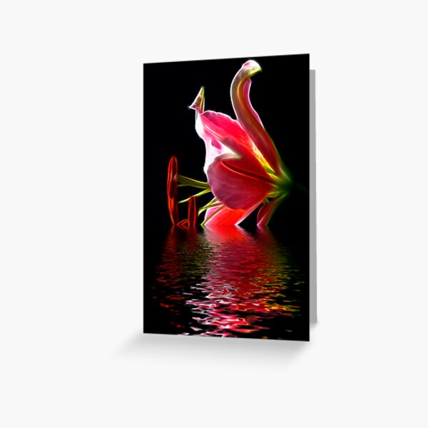 Star Gazer Lily Greeting Card