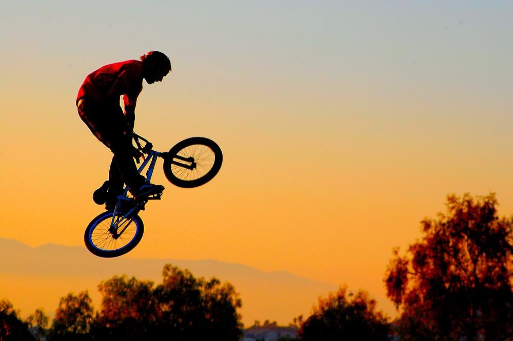 Flyin High by Cynde143