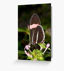 Poised and Pretty Greeting Card