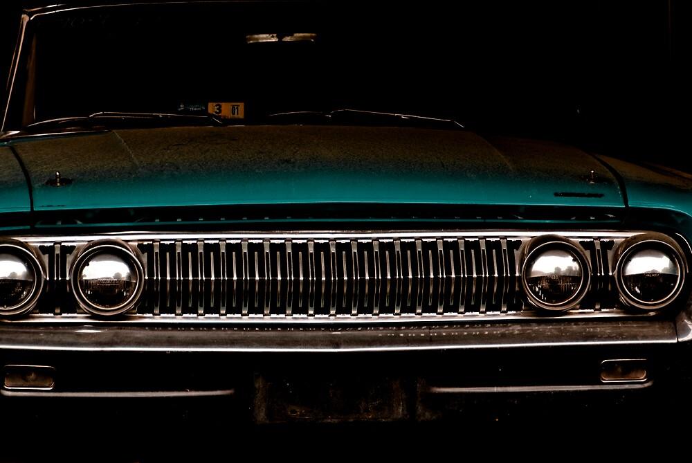Dusty by Rod  Adams