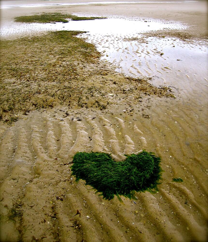 seaweed heart by geikomaiko