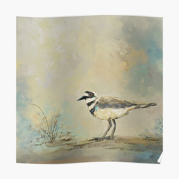 Shore Bird 2945 Poster
