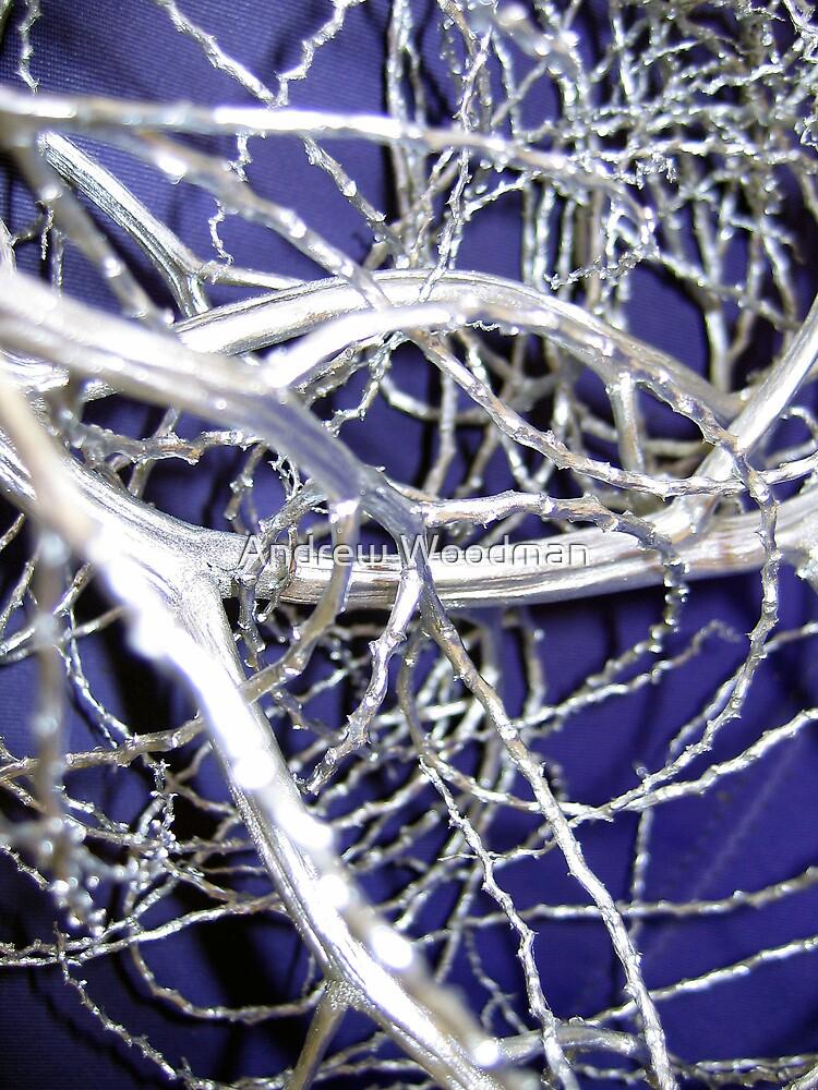 Chrome sticks by Andrew Woodman