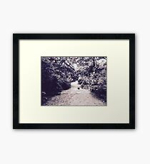 photography landscape Framed Print