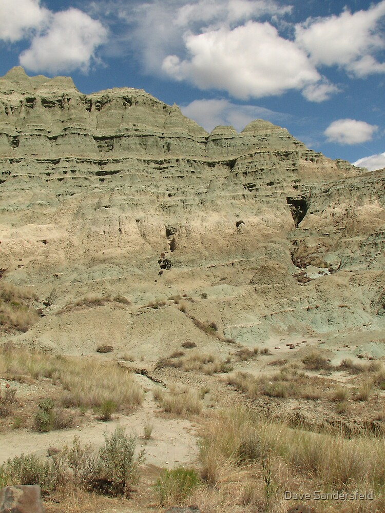 Turtle Cove Formation in Eastern Oregon by Dave Sandersfeld