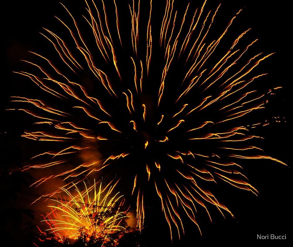 Fire Burst by Nori Bucci