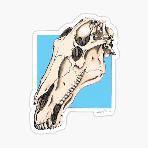 Horse Skull Sticker