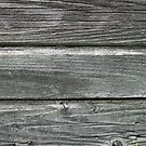 Texture of gray weathered boards by mrivserg