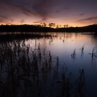 loch kinord sunset by codaimages